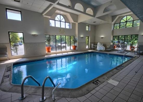 Comfort Inn Near Greenfield Village: Pool