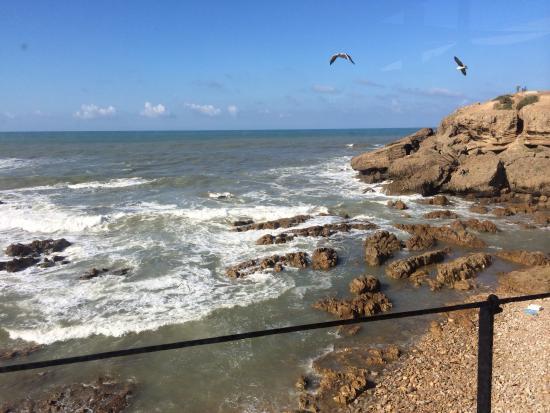 Le Cabestan - Ocean View : Vue