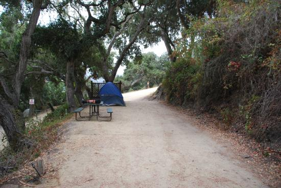 Saddle Mountain RV Park : Our tent site