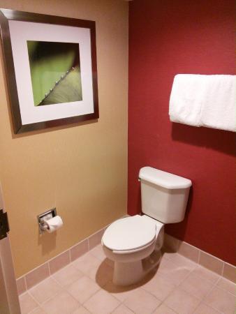 Courtyard Jacksonville Butler Boulevard: Toilet