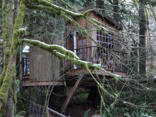 Treehouse Point: The Nest