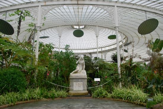Botanic Gardens And Kibble Palace: Inside The Greenhouse