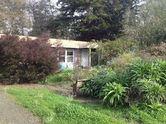 Lodging & Llamas : Front of Alder Cottage