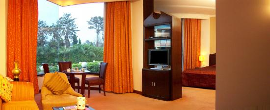 Claremont Hotel and Convention Centre: Suite Room