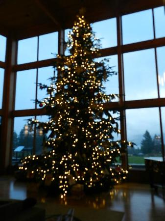 Skamania Lodge Christmas Events 2020 The huge Christmas tree in the great room   Picture of Skamania