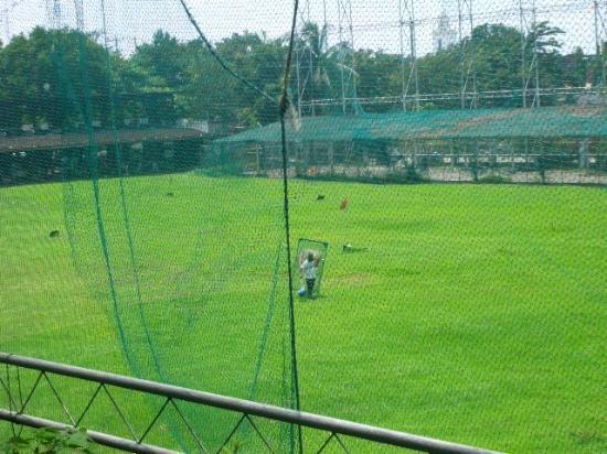 Club Intramuros Golf Course : Driving range ball picker