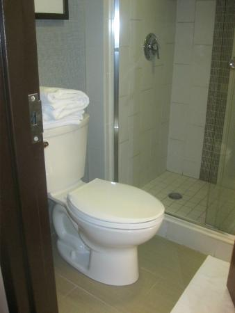 Hyatt Place Mystic : Toilet and shower. The sink is outside the bathroom