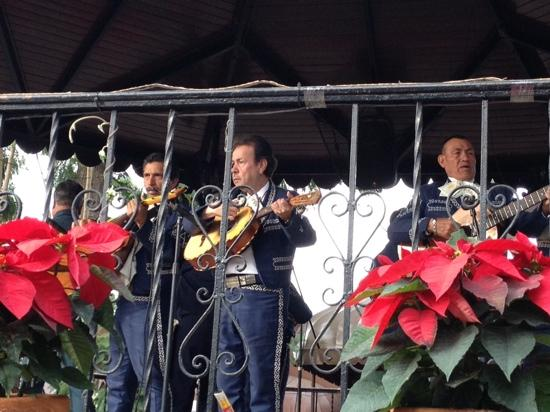 El Parian: One of the mariachi bands during the free show