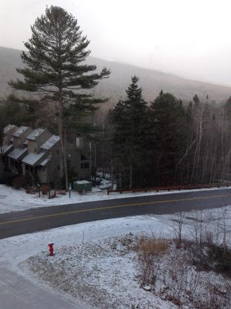 Silver Fox Inn: View from my room.