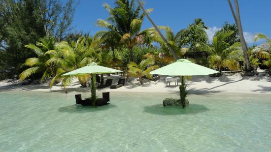 The St. Regis Bora Bora Resort: Private lunch