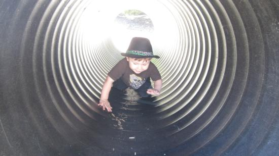 Bay Area Discovery Museum : tunnels!