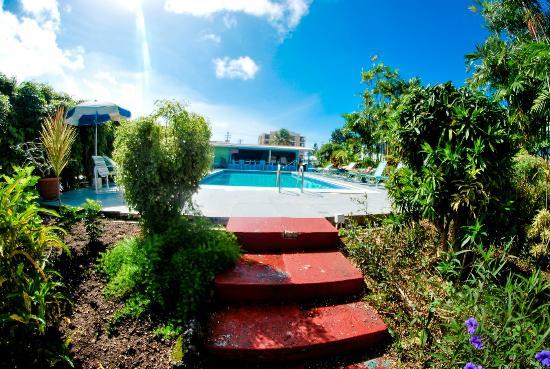 The Palm Garden Hotel: Piscina!