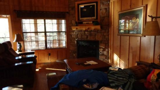 Cabins at Green Mountain: living room