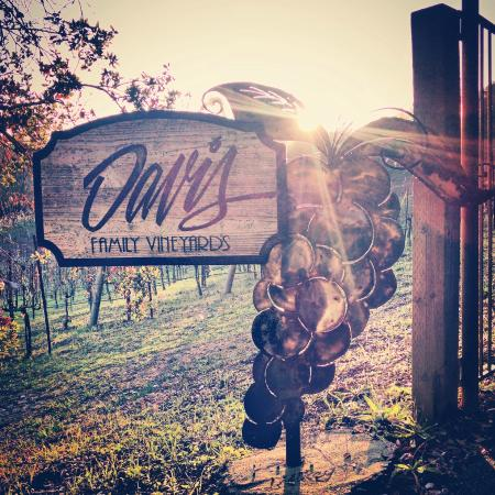 Healdsburg, CA: Davis Family Vineyards