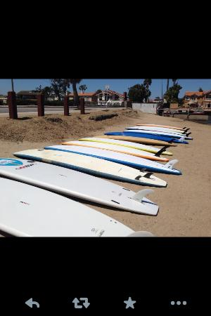 Comfort Inn Oceanside : Island Water Sports will help you in this department