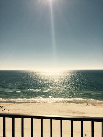 Phoenix X: Beach view