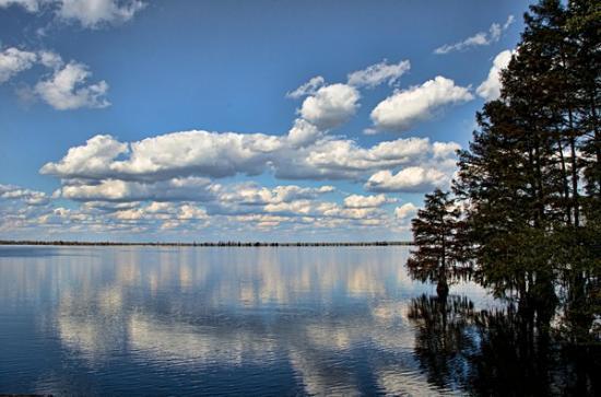 Santee State Park: The Lake