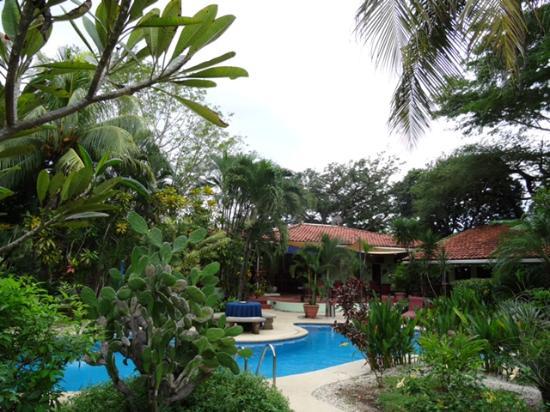 Hotel Bula Bula: Pool