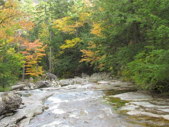 Old Man of the Mountain Profile Plaza: Beginning of foliage season - looking down cascade Brook