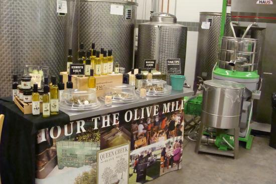 Queen Creek Olive Mill : Olive Oil Tour