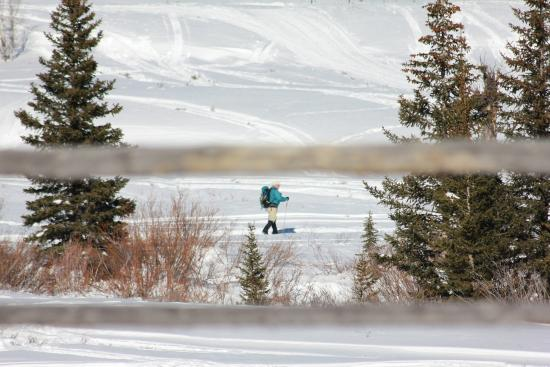 Cora, WY: Winter Cross-Country skiing trails
