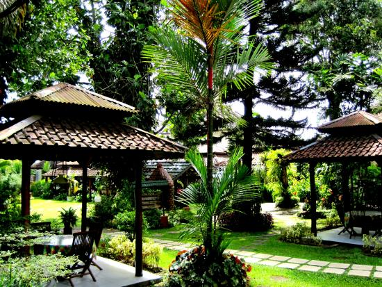 Near swimming pool area picture of hotel taman sari for Balcony hotel sukabumi