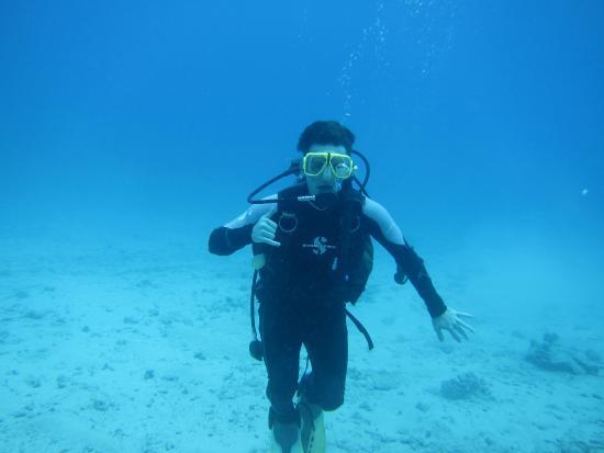 Manini Dive Company: Chillin At The Bottom