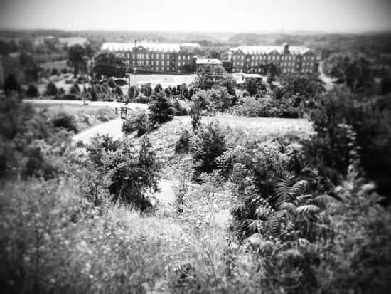 Hampton Inn Staunton: view from our window