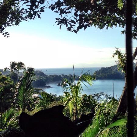 Hotel Costa Verde: View from anaconda restaurant for breakfast. Can't beat it