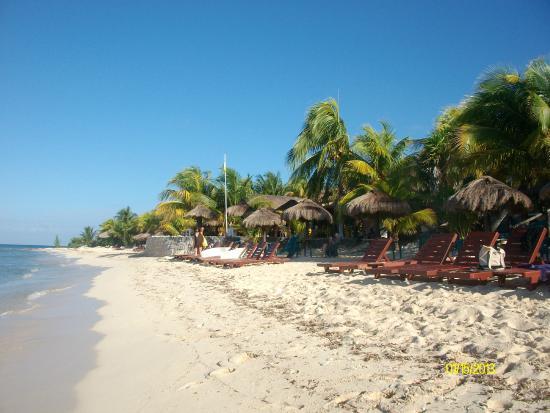 Playa Miguel Beach Club Reviews