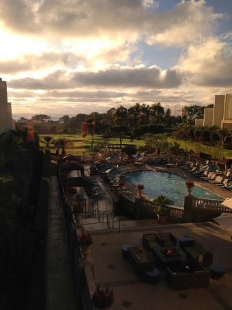 Hilton La Jolla Torrey Pines: The grounds and ocean