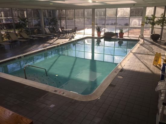 Sheraton Eatontown Hotel: Pool