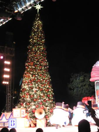 knotts berry farm christmas tree lighting show