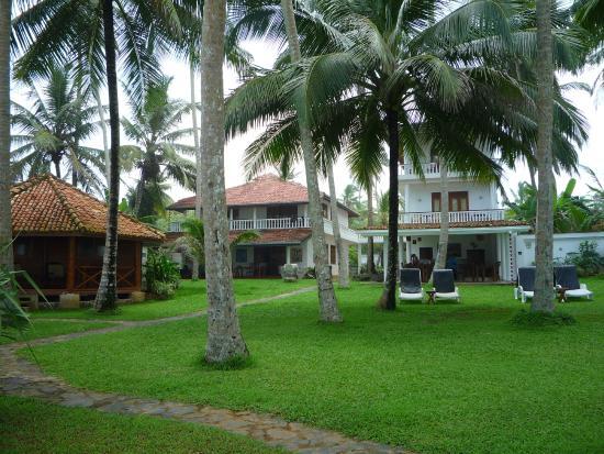 Rockside Cabanas Hotel : Garden