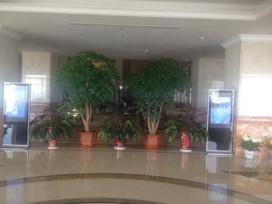 Shidao Hotel: ロビー