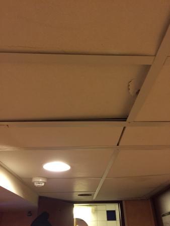 Loginn Hotel: Il soffitto