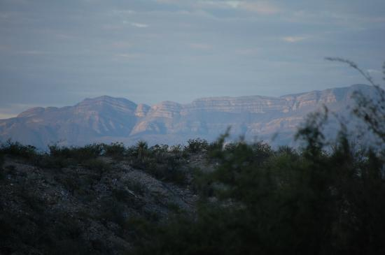 Chinati Hot Springs: Sunrise view from top of hill toward Mexico
