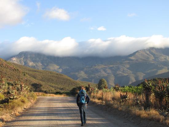 Koedoeskloof Country Lodge : Morning walk