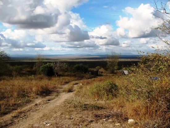 Arusha Village Experience: Le maasai Steppe