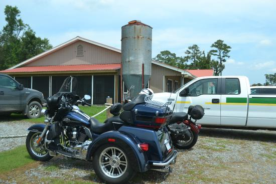 Engelhard, Kuzey Carolina: Some Harley's in the parking