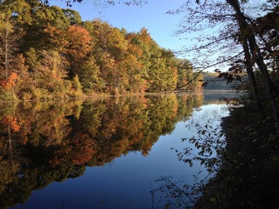 Burke Lake Park : View from the walking trail