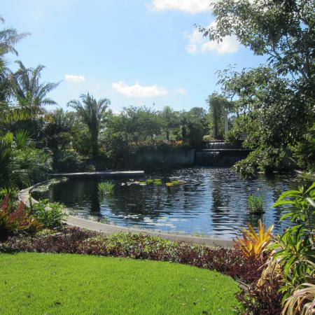 Naples botanical garden picture of naples botanical - Botanical gardens naples florida ...