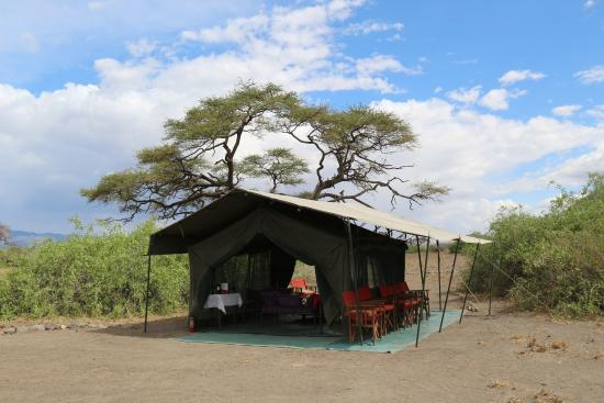 Lake Natron Halisi Camp: Das zelt