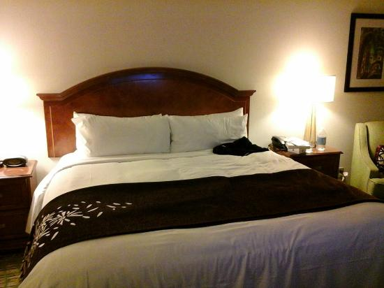 Tampa Airport Marriott : my lovely bed