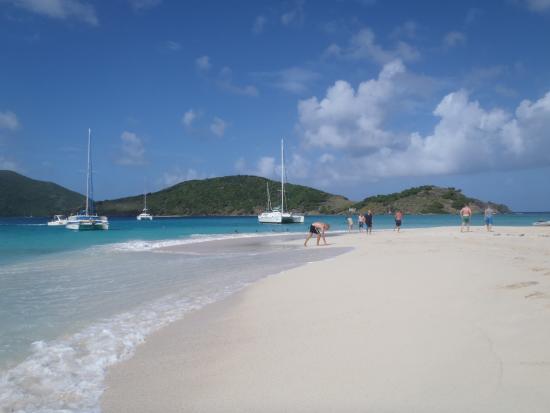 Aristocat Charters: Sandy Spit beach