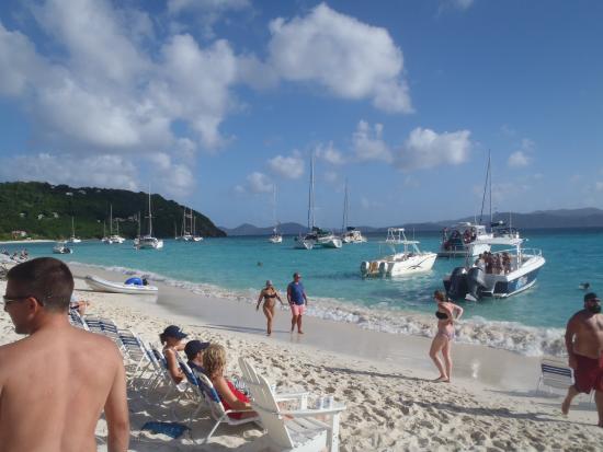 Aristocat Charters: White Bay beach