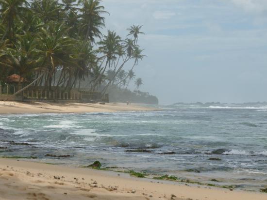 Sri Gemunu Beach Resort: Strandbereich neben dem Hotel