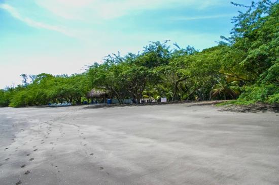 David, Panama: playa bongo