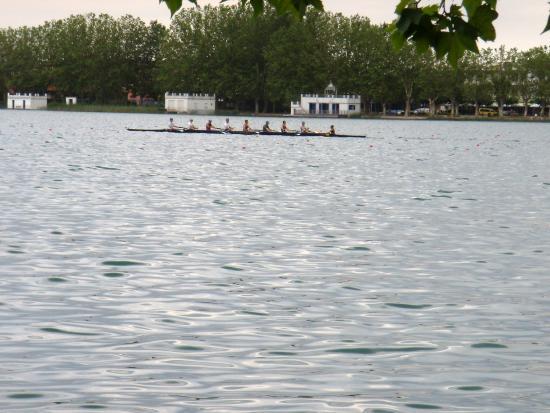 Lake Banyoles : Remo en el Estany