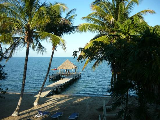 Parrot Cove Lodge : Our view from the room